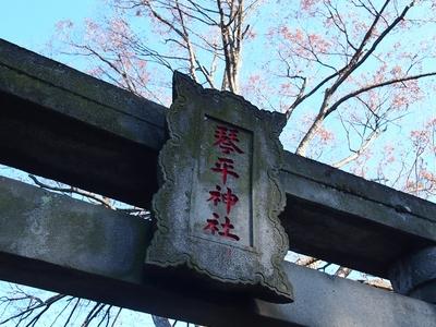 260110 琴平神社13