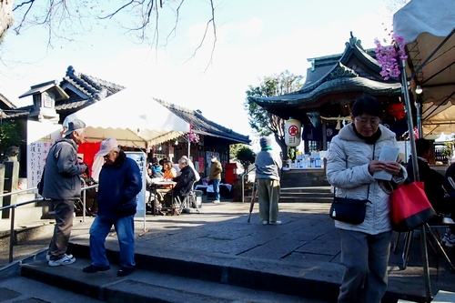 260110 琴平神社30