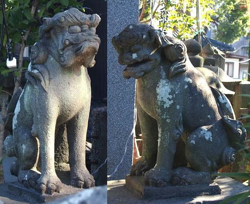 260110 琴平神社31