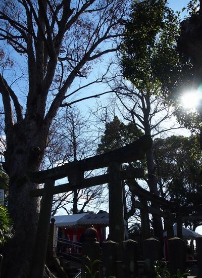 260110 琴平神社37