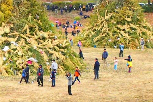 260112 緑川湖どんど祭り16