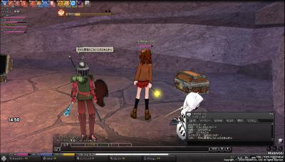 mabinogi_2009_11_05_007.jpg