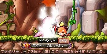 Maple101106_224106.jpg