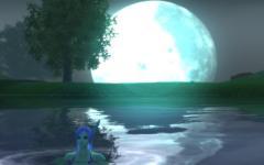 月&水着購入