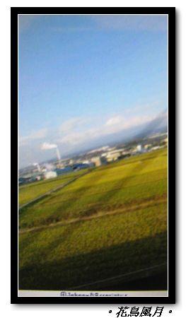 IMG_3393.jpg
