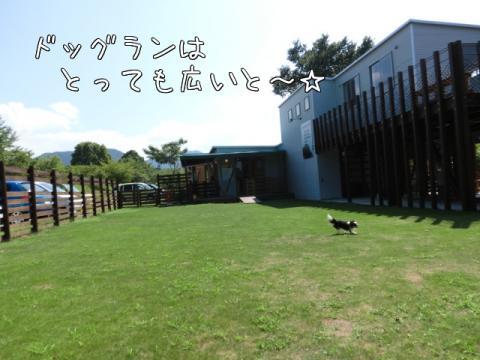 7ikcP.jpg
