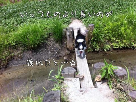 I_vDl.jpg