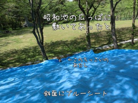 Q7Nu_.jpg