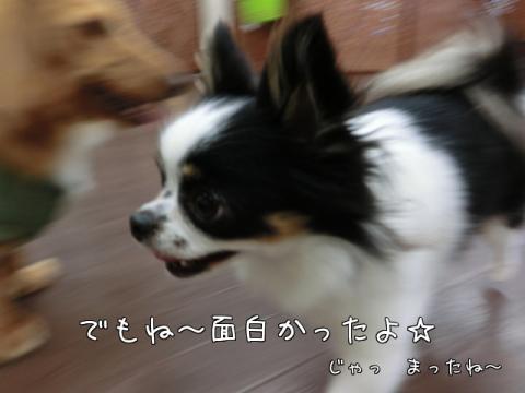 iWF4l.jpg