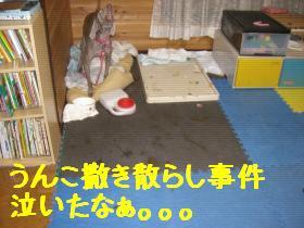 200912287+259_convert_20100814114838.jpg