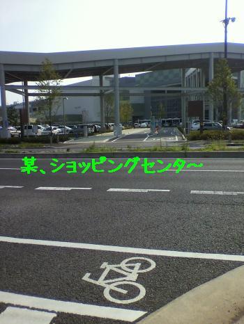 2010081615190001_convert_20100817195920.jpg