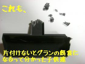 CIMG6260_convert_20100814120920.jpg