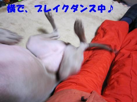 IMG_0920_convert_20100220001420.jpg