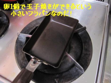 IMG_2546_convert_20100624183057.jpg