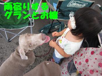 IMG_2656_convert_20100627142136.jpg