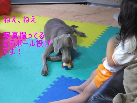 IMG_2773_convert_20100702084137.jpg