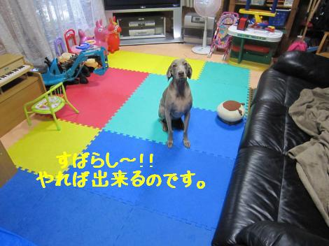 IMG_2869_convert_20100707215659.jpg