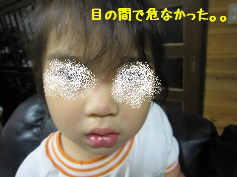 IMG_3523_convert_20100806075526.jpg