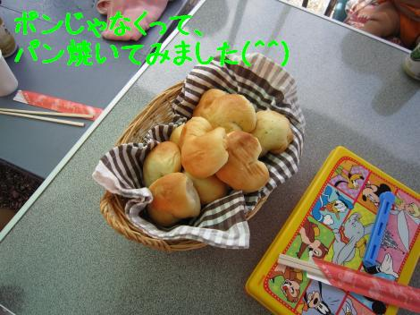 IMG_3571_convert_20100808202112.jpg