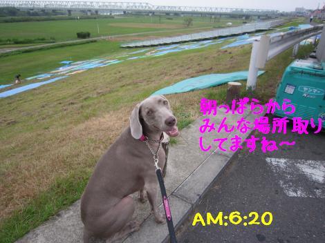 IMG_3774_convert_20100815160058.jpg