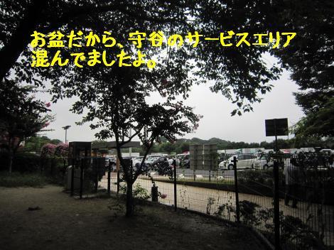 IMG_3778_convert_20100815160105.jpg