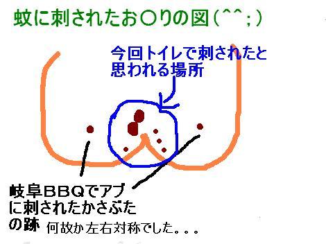 IMG_3864_convert_20100819110713-2.jpg