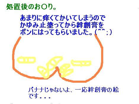 IMG_3864_convert_20100819110713.jpg