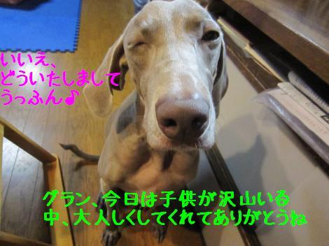 IMG_3914_convert_20100822134330.jpg