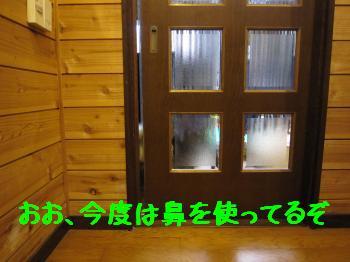 IMG_4012_convert_20100826071109.jpg