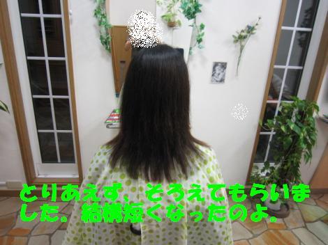 IMG_4332_convert_20100910104643.jpg