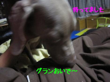IMG_4577_convert_20100921123901.jpg
