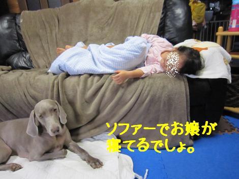 IMG_4744_convert_20100929175501.jpg