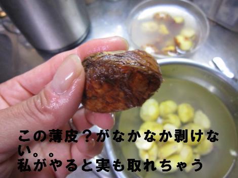 IMG_4939_convert_20101007124057.jpg