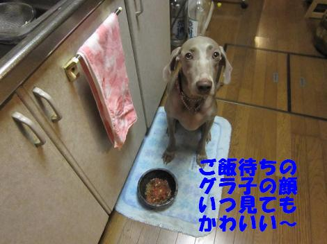 IMG_5114_convert_20101018122346.jpg