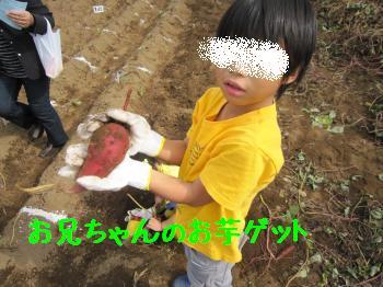 IMG_5125_convert_20101018134256.jpg