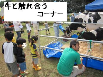 IMG_5136_convert_20101018142723.jpg