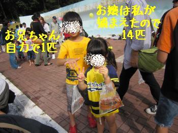 IMG_5144_convert_20101018143447.jpg