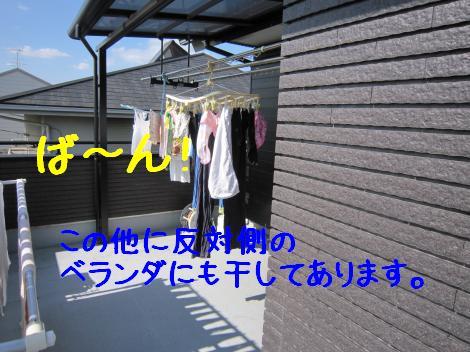 IMG_5226_convert_20101024175330.jpg