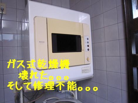 IMG_5235_convert_20101024175416.jpg