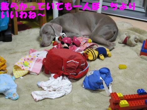 IMG_5390_convert_20101101103506.jpg