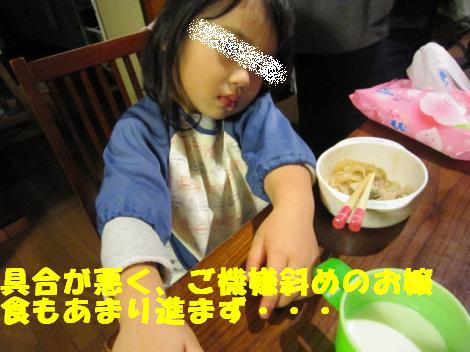 IMG_5433_convert_20101104095816.jpg