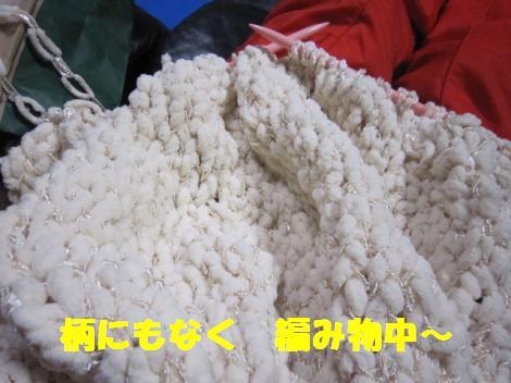 IMG_5434_convert_20101105110327.jpg
