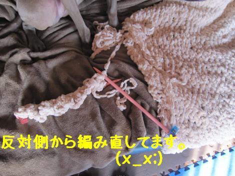IMG_5630_convert_20101112190609.jpg