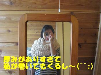 IMG_5748_convert_20101125104458.jpg