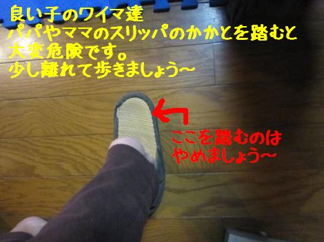 IMG_5837_convert_20101201114642.jpg