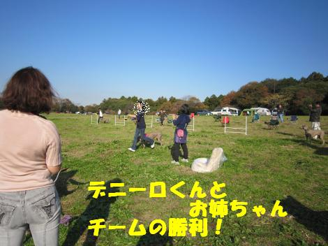 IMG_5932_convert_20101206122534.jpg