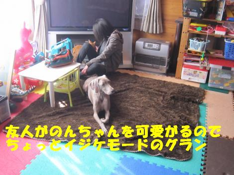 IMG_5988_convert_20101209100641.jpg