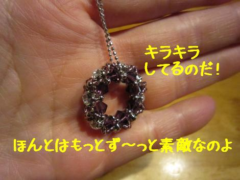 IMG_6008_convert_20101211182723.jpg