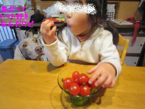 IMG_6114_convert_20101213182526.jpg
