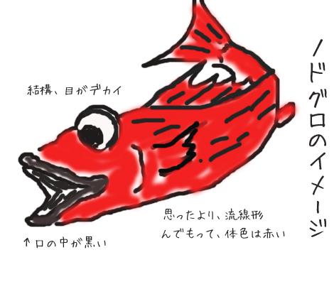 鮮魚は、滅多にお目にかかれません。